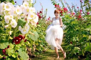 海外婚紗攝影推薦 香港日本台灣韓國歐洲 OVERSEAS PRE-WEDDING PHOTOGRAPHY PACKAGES coolstylist-59